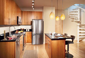 Allegro Penthouse Kitchen